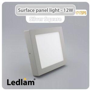 Ledlam LED Surface Panel Light 12W Square 1717SPS silver 01